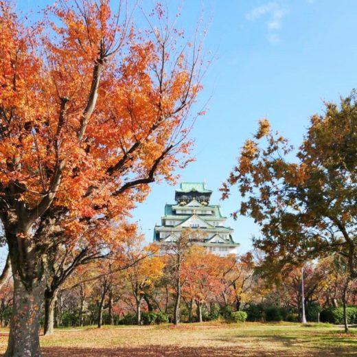 紅葉と大阪城
