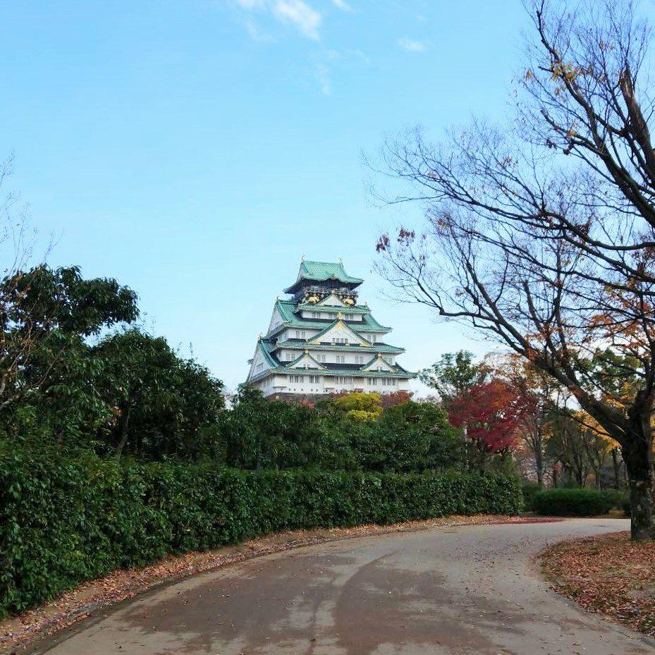 冬の大阪城